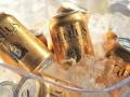 Genus light craft beer