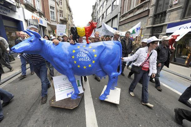 EU Commission to study stabilising dairy market