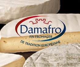 Quebec cheese maker Damafro pursues growth in North America