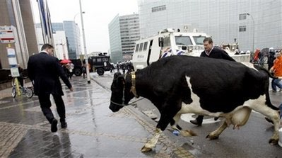 Farmers protest over milk prices ahead of EU meeting