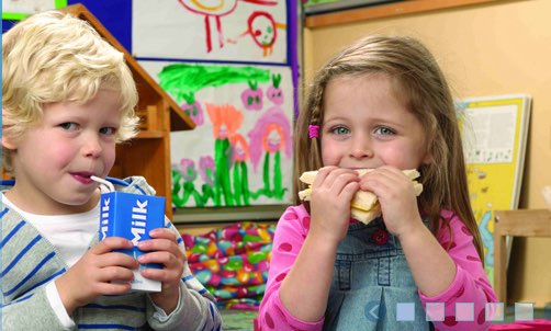 Lunch boxes should be nutritious, says Dairy Australia
