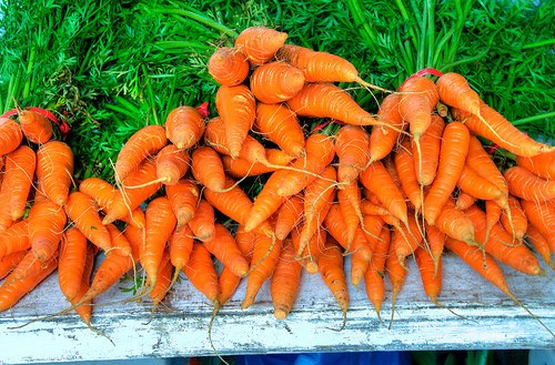 95% of households purchase carrots