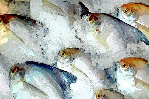 Food Standards Agency relaxes fish freezing requirements