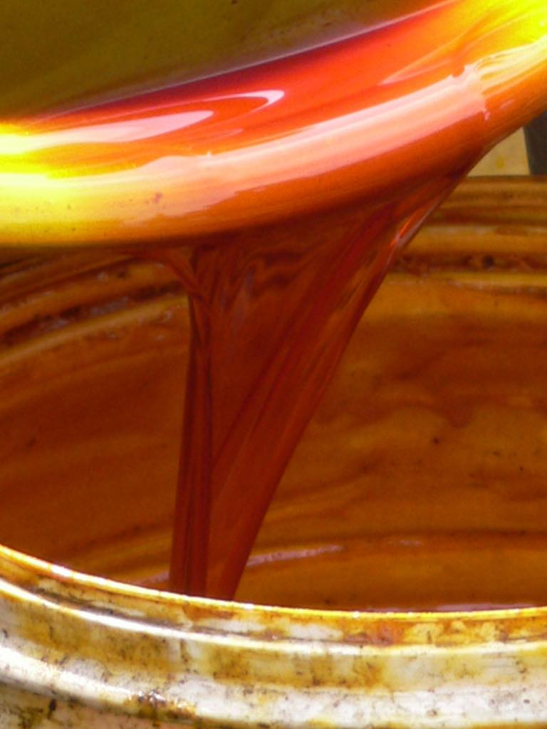 Cargill and TFT join to advance sustainable palm oil