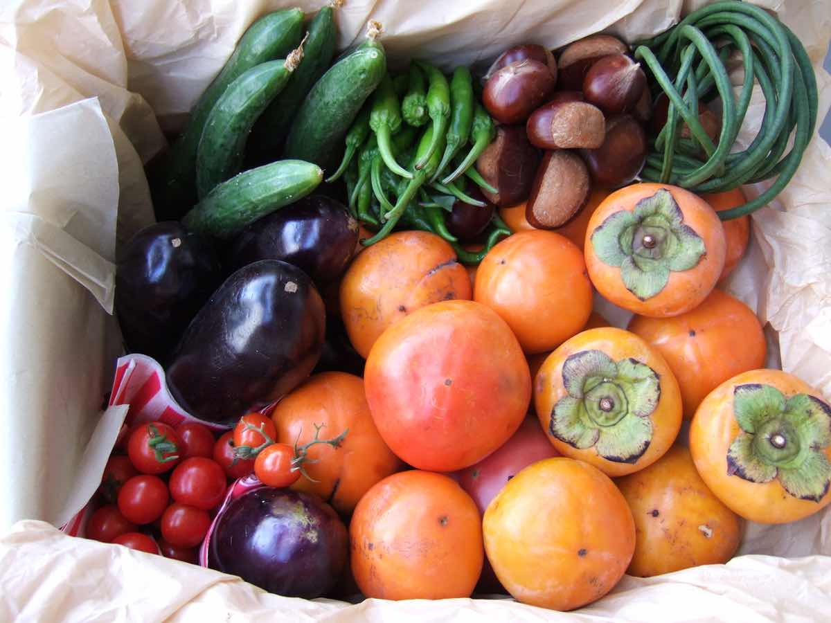 UK consumers happy to buy damaged fruit and vegetables