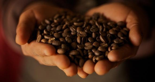 Fairtade Foundation and Fairtrade Africa announce 'women in coffee' project