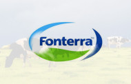 Fonterra returns to profitability, plans to sell stake in DFE Pharma