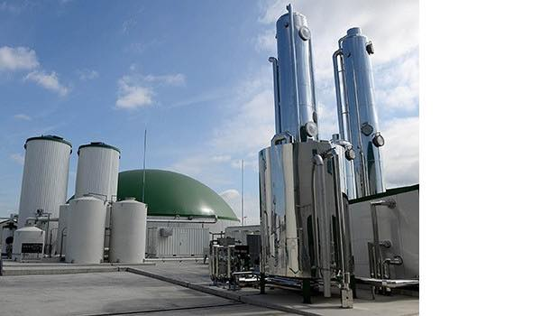 Fulton's boiler installation helping to divert food waste from landfill