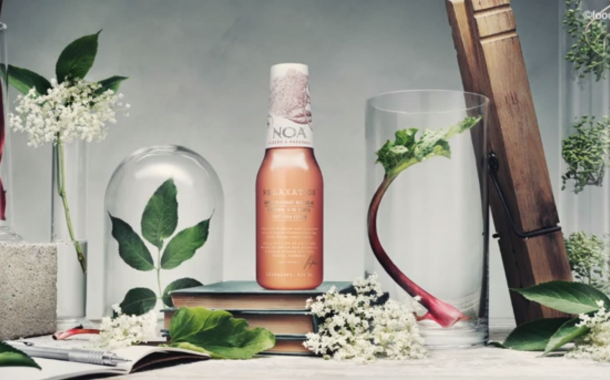 Noa Relaxation Drinks: How to start a beverage brand