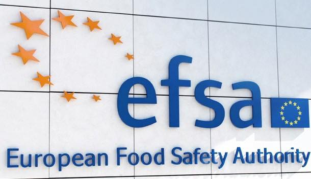 Chicory fibre's digestive claims approved by EFSA