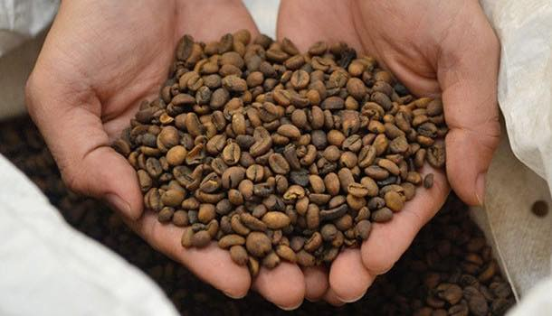 Nestlé opens €75m decaffeinated coffee production plant in Vietnam