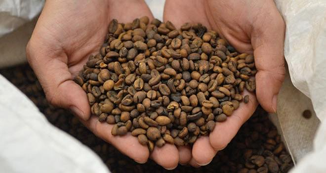 Nestlé Opens 75m Decaffeinated Coffee Production Plant In Vietnam