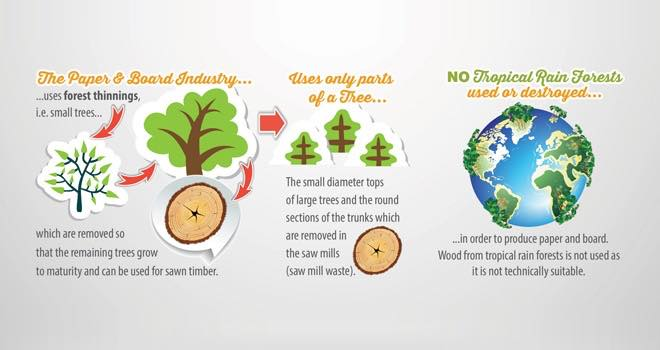 Infographic: Pro Carton highlights sustainability of cartonboard packaging
