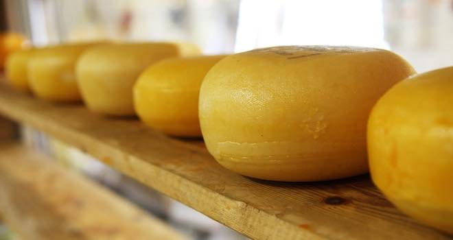Emmi acquires Canadian cheese importer