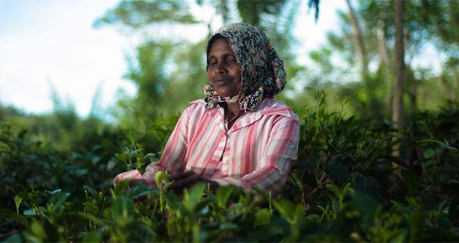 WWF and LiveWell for Life call for European sustainable food plan