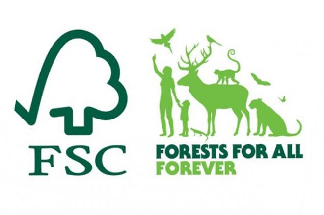 Forest Stewardship Council reveals new global brand and visual identity