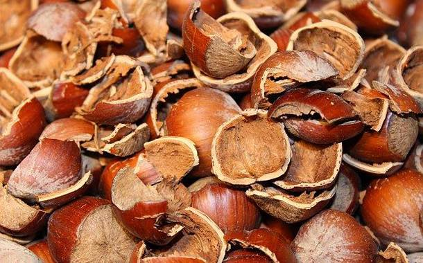 Ferrero develops packaging from waste hazelnuts and cocoa beans