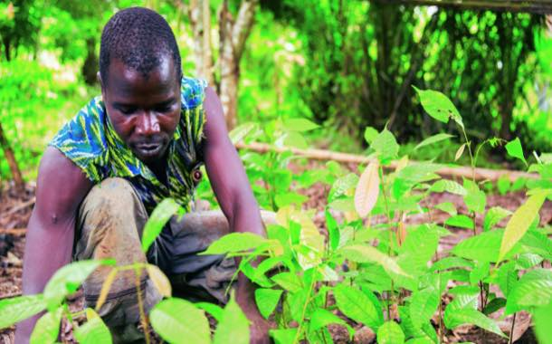Barry Callebaut launches Cocoa Horizons Foundation