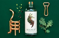 Diageo acquires majority stake in non-alcoholic spirit brand Seedlip