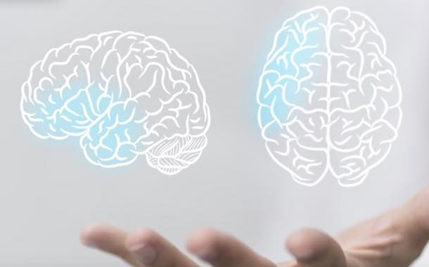 Frutarom's Neurovena 'proven' to support cognitive performance