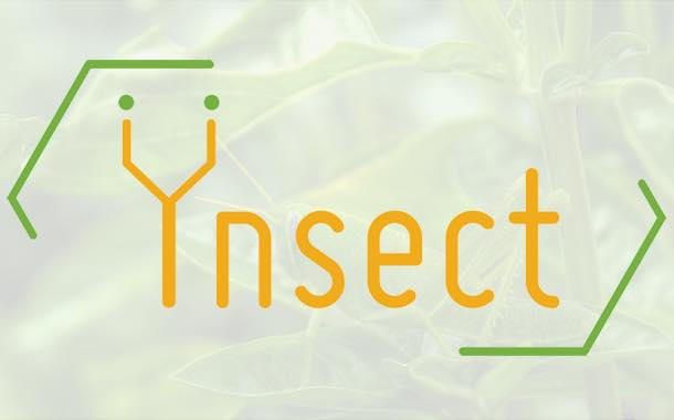 Interview: Ynsect and their edible insects