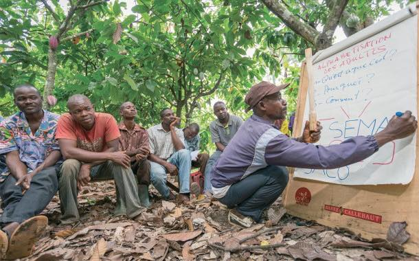 Barry Callebaut develops range of sustainable chocolate products