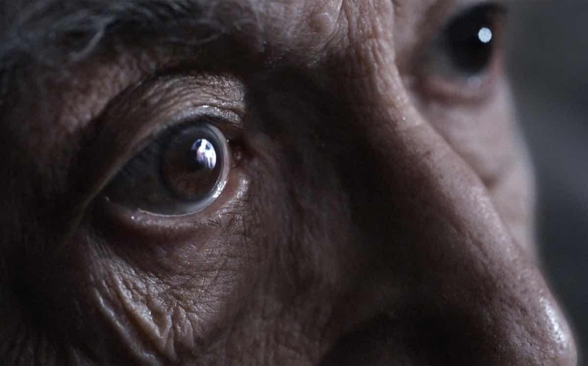 John Lewis\' Christmas ad highlights loneliness of old age - FoodBev ...