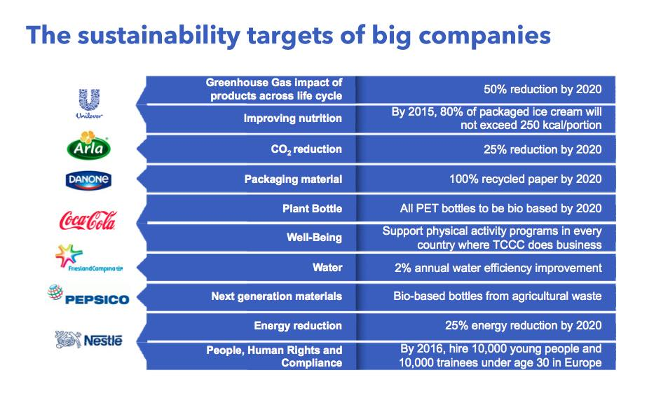 Company sustainability agendas
