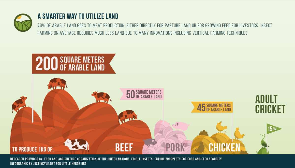 LH Land Infographic