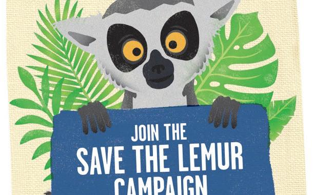 Madécasse launches new bars to help protect endangered lemurs