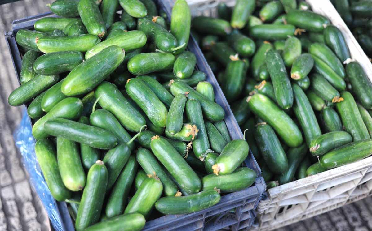 Consumers will buy into 'wonky veg', say 90% of retail managers