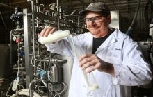 'Rapid, low temperature process adds weeks to milk's shelf life' - study claims