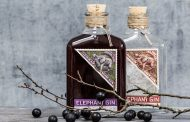 Elephant Gin to sell new bottles to support elephant conservation