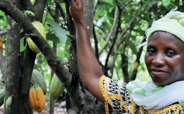 Cocoa Life initiative has 'empowered women farmers' – report