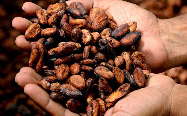 Olam acquires Indonesian cocoa processor BT Cocoa for $90m