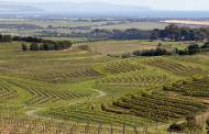 Australian government pledges $39.5m to boost wine exports
