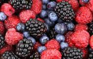 Organic sales rise as consumers 'make nutritious food choices'