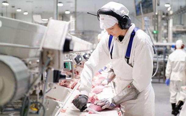 Finland's Atria could 'centralise' pork operation in productivity bid