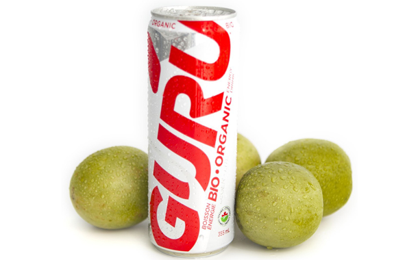 Guru Energy uses monk fruit to sweeten new Organic Lite drink