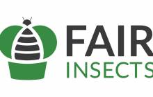 Protix acquires mealworm and grasshopper breeder Fair Insects