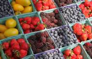 European grocery market grows at fastest rate for three years