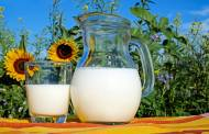GMO-free dairy product launches in Germany double in a year