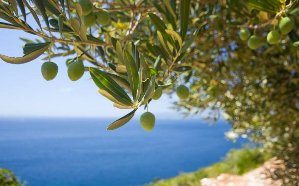 Unilever to sell its olive oil assets in Greece in bid to boost growth