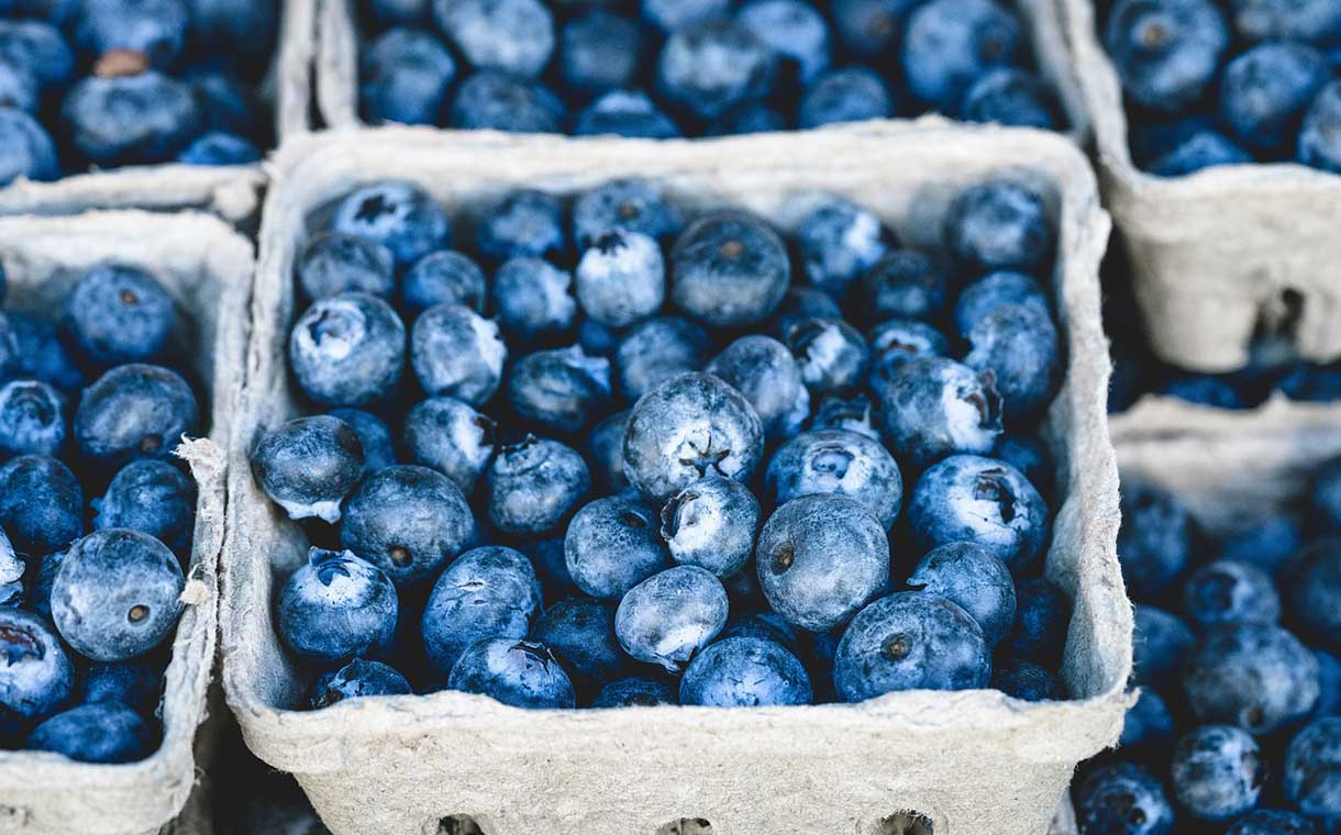 Chilean fruit company Hortifrut buys $160m blueberry business