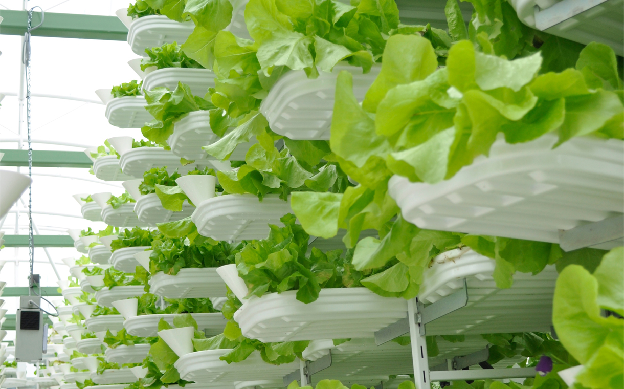 Vertical farming solutions, like this one from VertiCrop, could form a key part of the future of the food industry.