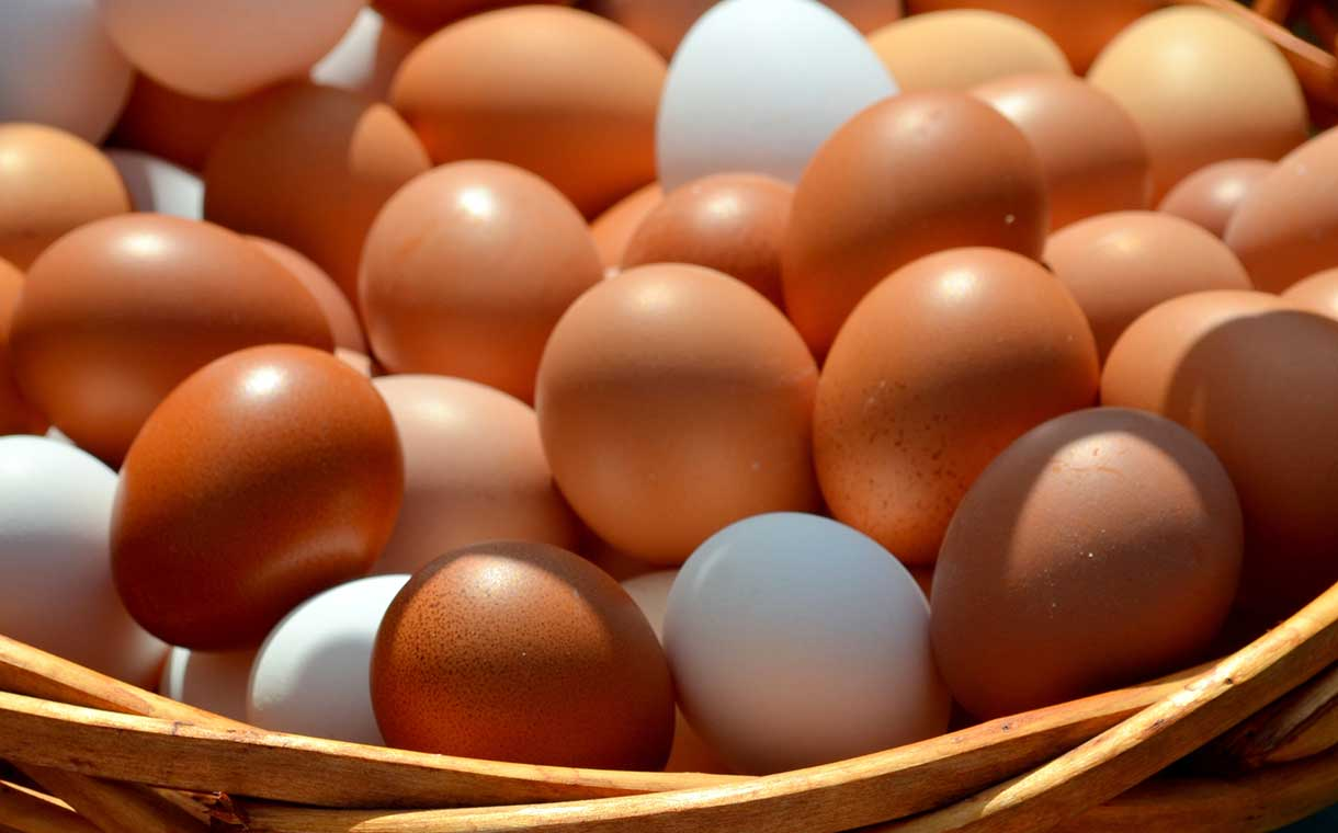 Nestlé lays out plan to switch to cage-free eggs globally by 2025
