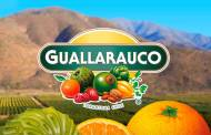 Coca-Cola expands in Chile with $78.9m deal for Guallarauco owner