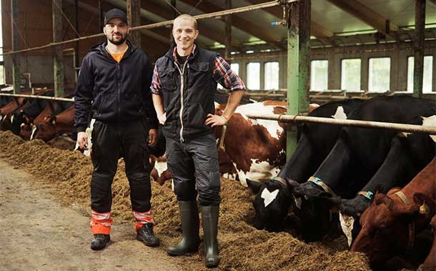 Valio to pay a bonus in Finland for responsible dairy production