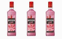 Pernod Ricard's Gin Hub creates a pink Beefeater gin