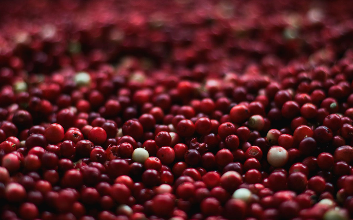 Ocean Spray expands in Quebec with Atoka Cranberries purchase